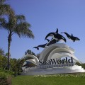 SeaWorld Orlando A Theme Park In Orlando, Florida