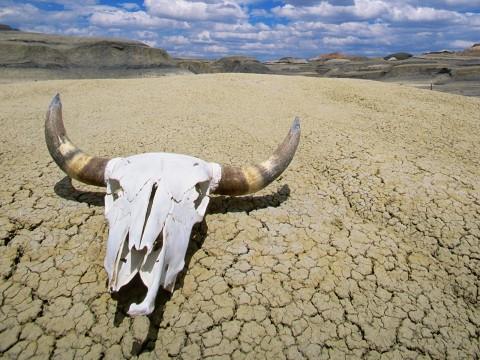 death-valley-desert-california
