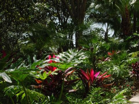 Moody-Gardens