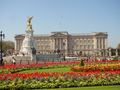 buckingham-palace-london (3)