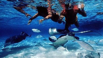 Cayman Islands (1)