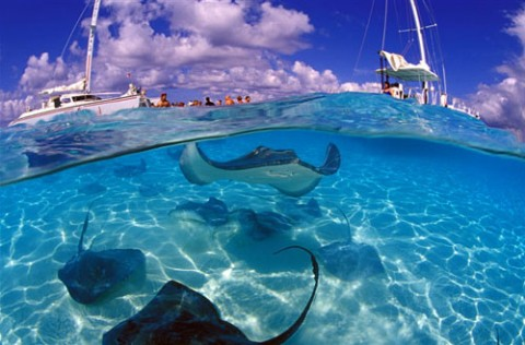 cayman-islands-caribbean-sea