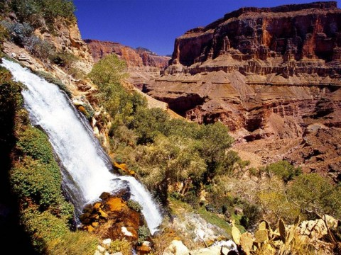 Grand Canyon National Park (4)