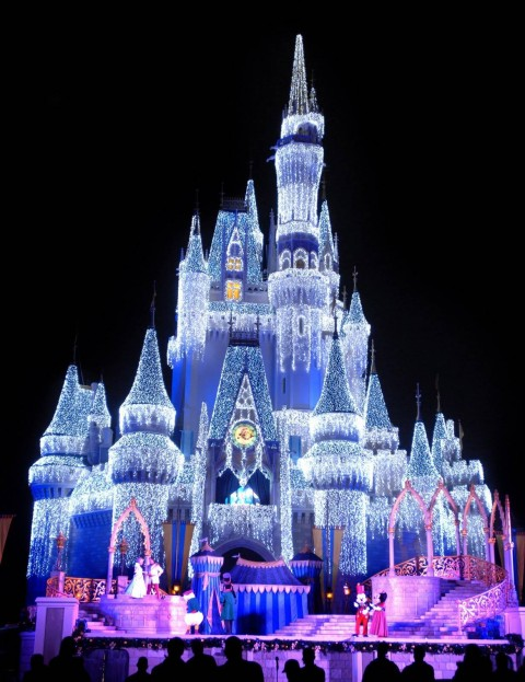 Magic Kingdom (10)