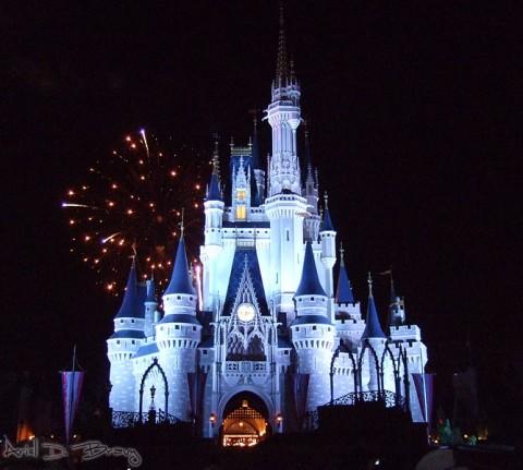 Magic Kingdom (8)