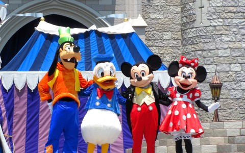 Magic Kingdom (3)