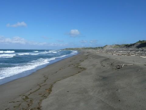 Sand Dunes National Park (4)