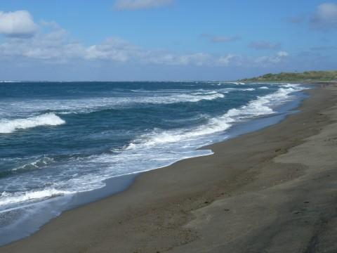 Sand Dunes National Park (3)