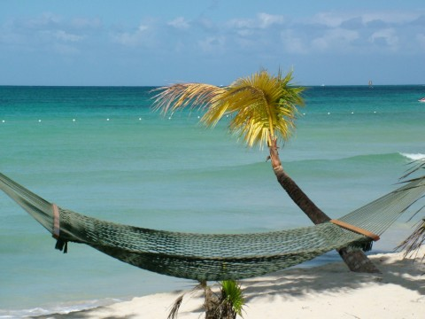 Jamaica (2)