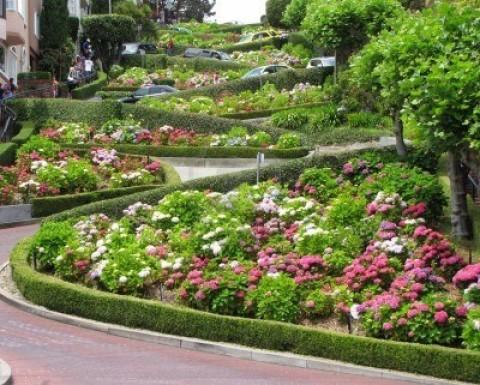 Lombard Street (9)