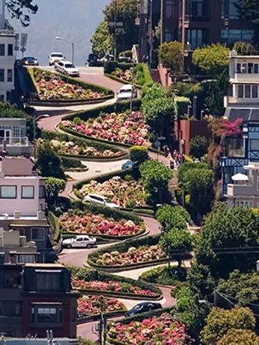 Lombard Street (8)