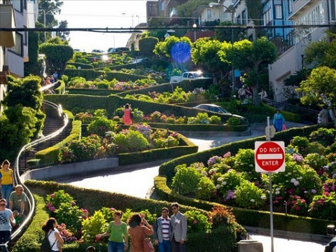 Lombard Street (5)