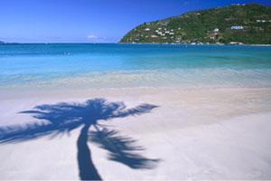 Tortola (3)